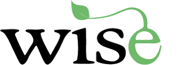 Wise Program Uninstaller 2.4.2 Build 145 Crack with Keygen Free Full 2021